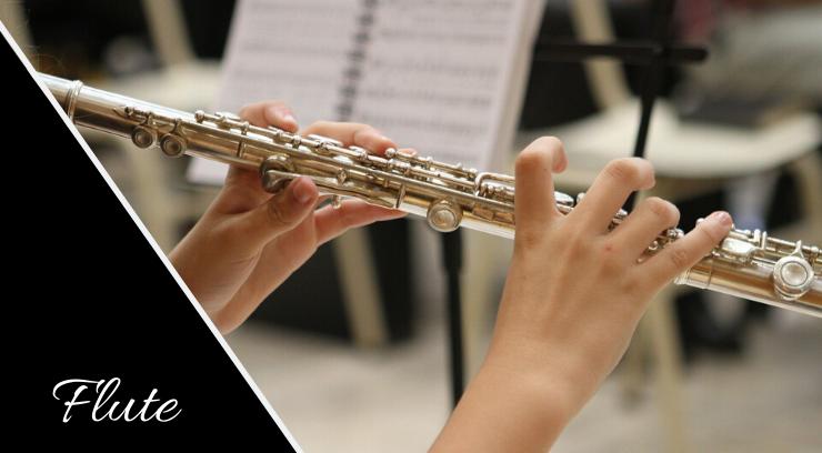 Flute picture