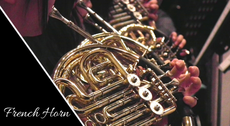 French horn picture