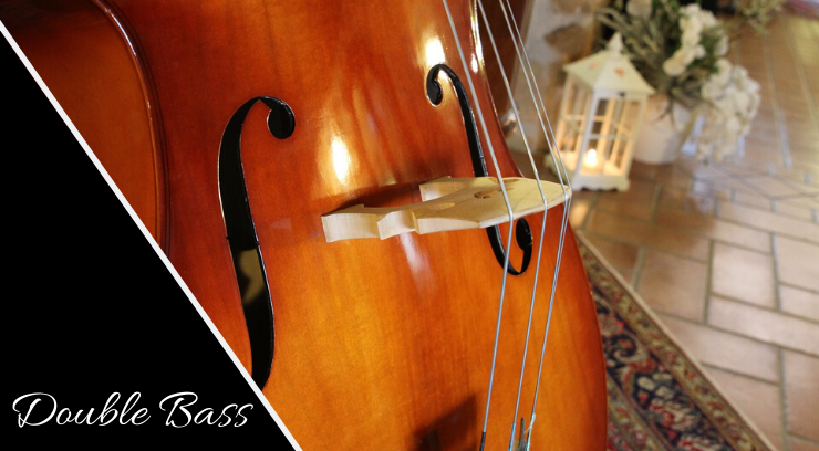 Double Bass picture